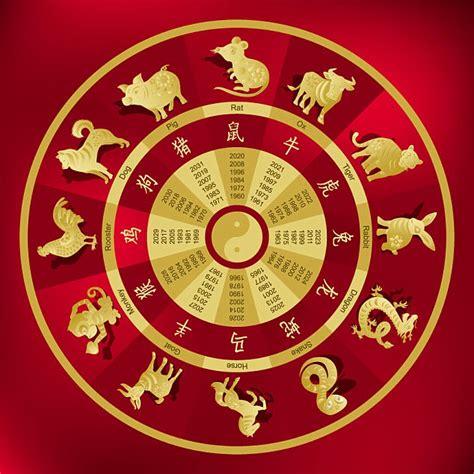 Zodiac expert reveals what the Chinese year of dog means