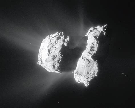 Rosetta's Comet 67P contains ingredients for life
